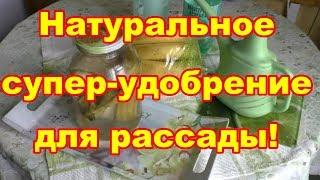 Делаем натуральное удобрение из банановых шкурок