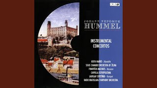 Concerto for Bassoon and Orchestra in F Major: Romanza. Andantino e cantabile