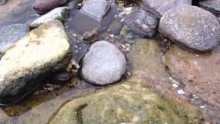 Merebus Telur di Tepi Pantai Wartawan, Kalianda, Lamsel