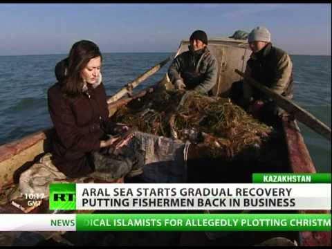 Aral Sea Part III: Return of the Fish?