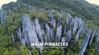 Journey to Mulu National Park & Pinnacles (Sarawak Malaysia) Ultra HD 4K