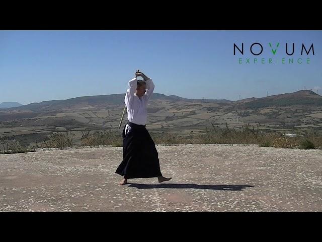 Happo Giri - Aikido Novum Experience - 合氣道 - 八方切