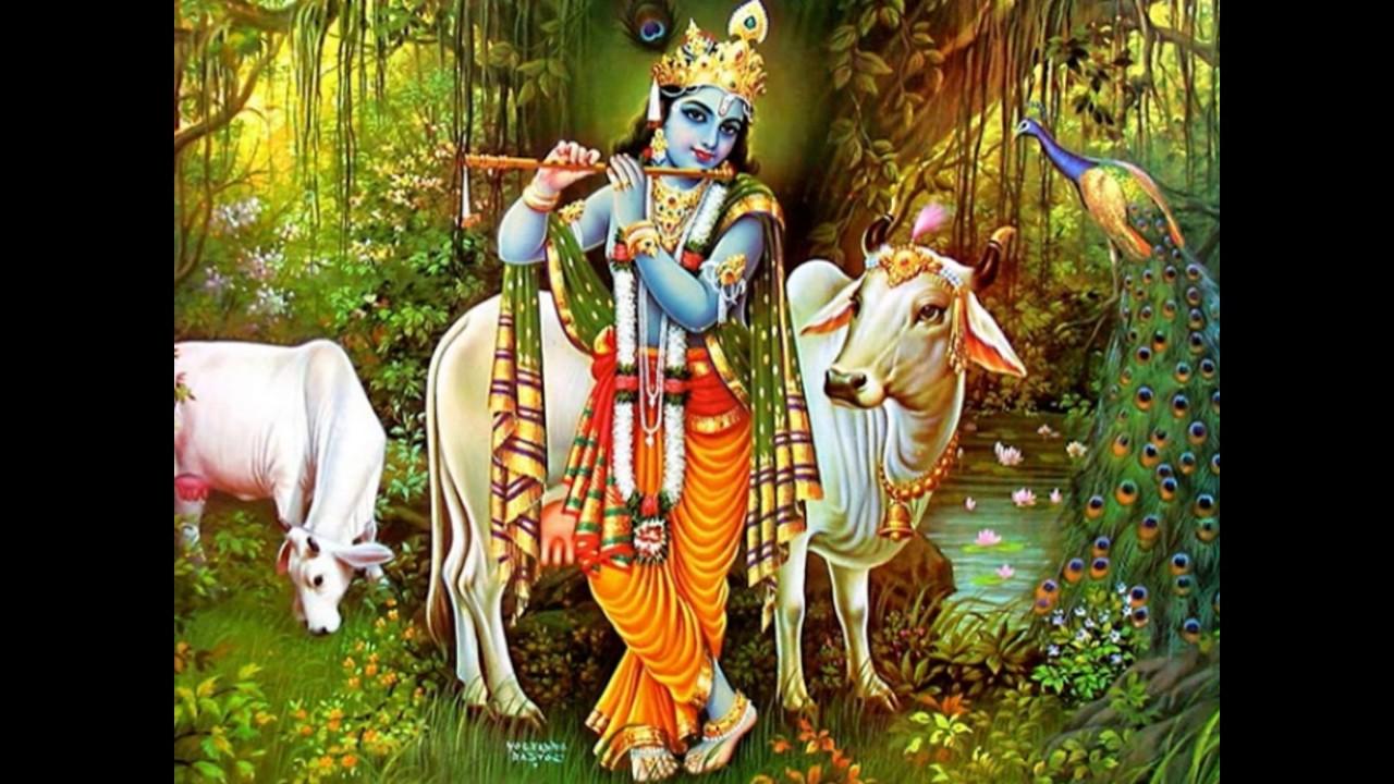 Lord Krishna Images God Krishna Images Krishna Wallpaper Krishna Hd Photos God Krishna Images Youtube