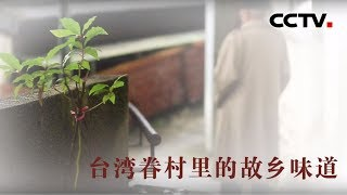 [中华优秀传统文化]故乡的味道  CCTV中文国际