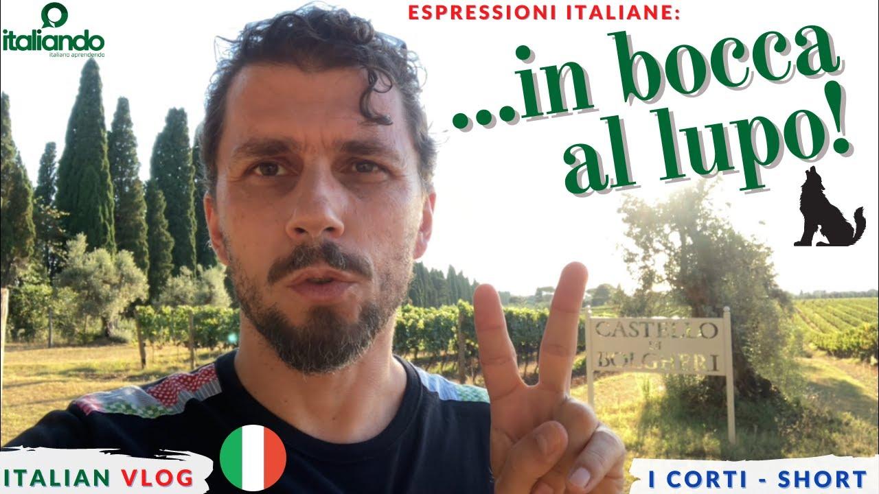 IN BOCCA AL LUPO Espressione idiomatica Expressões idiomáticas italiano italian idiomatic expression