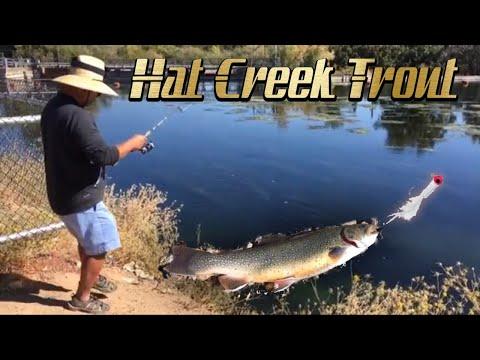 Hat Creek Fishing Sept 2018