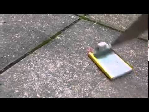 Poking A Phone Battery With A Knife: Explosion