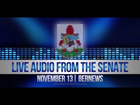 November 13 | Audio Of Morning In The Senate | 2019