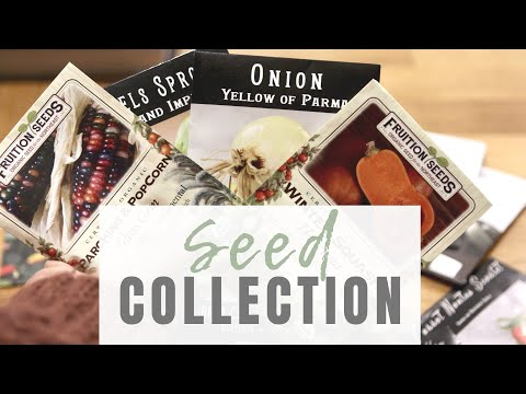 Organic Seed Collection and Favorite Seed Companies | VLOG