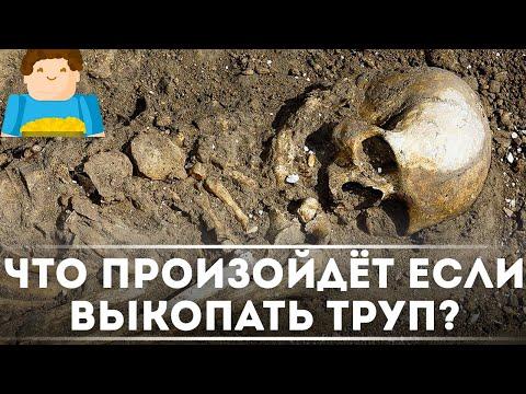 Что произойдёт, если выкопать ТРУП? [Plushkin]