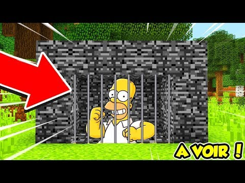 JE CAPTURE HOMER SIMPSON SUR MINECRAFT !!