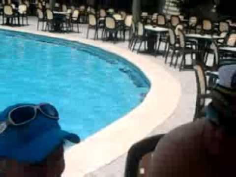 Бассейн в отеле Панорама Бунгалос