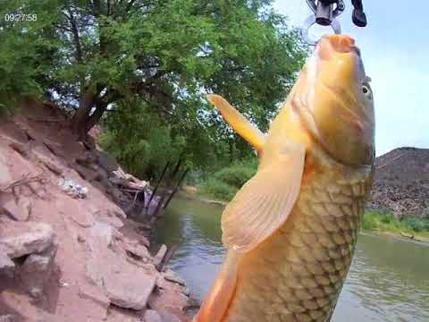 Fishing And Fighting Crime On The Rio Grande In Algodones, NM