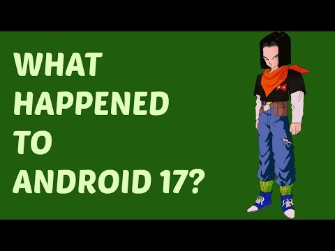 Whatever REALLY happened to Android 17? Quick Dragon Ball Z Discussion