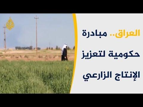 معدات زراعية بالتقسيط.. مبادرة عراقية حكومية لدعم الزراعة  - نشر قبل 2 ساعة