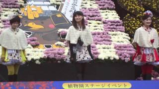 弘前城菊と紅葉まつり りんご娘ライブ からあの名曲です。カバー曲なの...