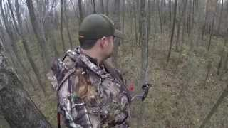 Bow Hunting Whitetails:  2014 Illinois Bow Hunt