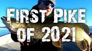 Pike fishing in freezing conditions first session of 2021