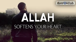 ALLAH SOFTENS YOUR HEART FOR DOING THESE THINGS