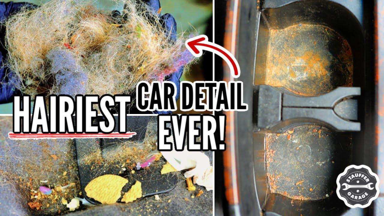 Detailing the Nastiest Pet Hair Toyota Land Cruiser! Complete Disaster Interior Car Detail