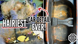 DEEP CLEANING the Nastiest Pet Hair SUV! Complete Disaster Interior Car Detailing