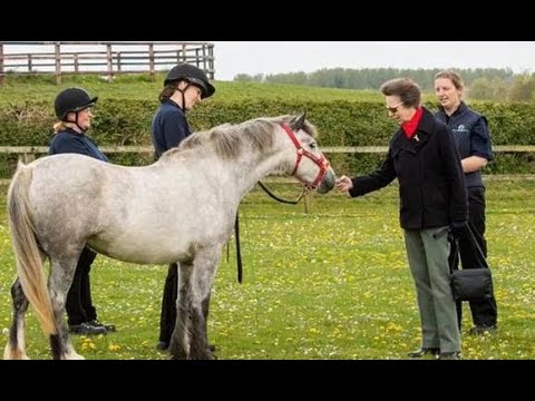 Princess Anne's incredibly busy week praised by Queen - Twelve events in four days!
