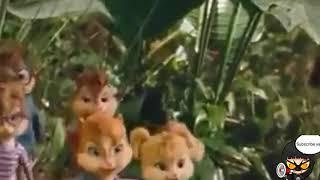 Cie Cie Parody Chipmunk