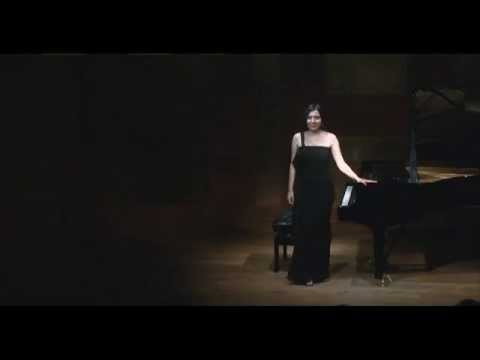 Caroline Fischer - Liszt: Hungarian Rhapsody No. 13 in A minor (with musical introduction in Korean)
