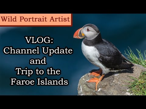 Vlog: Discussing the State of the Channel and Trip to the Faroe Islands