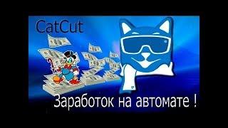 Catcut БОТ l Накрутка переходов