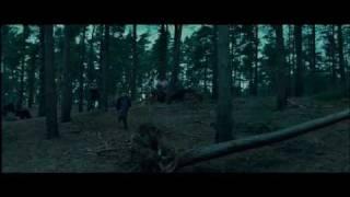 Гарри Поттер и Дары Смерти Трейлер - субтитры [HD]