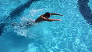 как правильно научиться плавать баттерфляем