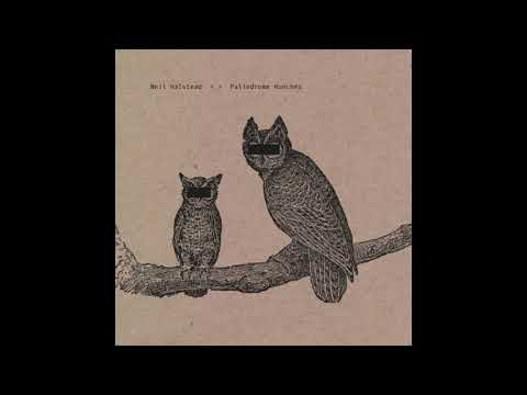 Palindrome Hunches (Neil Halstead) mp3