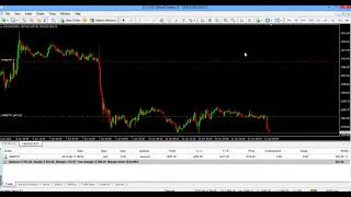 Forex currency trading without indicators and auto robots -32 (www.forextamil.com)