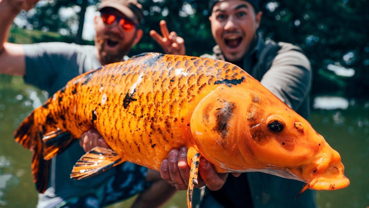 Wir angeln die teuersten Fische der Welt in kleinem Geheimsee!!!