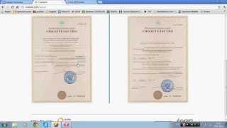 О проекте Vteme  Выплаты Отзывы Маркетинг Заработок в интернете)