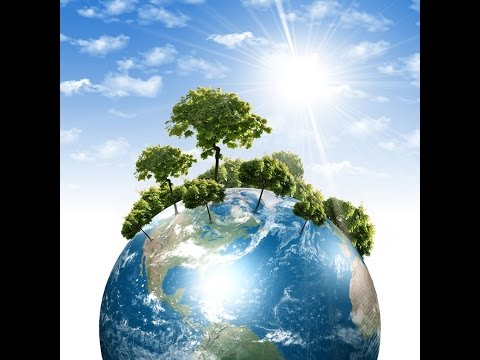 The Economic Value of Environmental Conservation