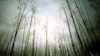 Nine Inch Nails - 13 Ghosts II (Rain)
