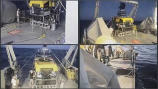 Dive #35 - Daikoku Seamount - FK161129 - SuBastian