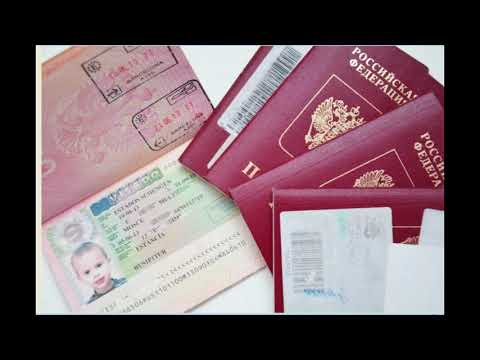 Заполнение анкеты для получения шенгенской визы для ребенка-дошкольника