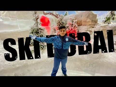 CRAZY EXPERIENCE AT SKI DUBAI I MALL OF EMIRATES I (MALAYALAM TRAVEL VLOG ) I FRIDAY VLOG #2