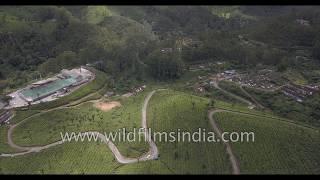 Tea Factory aerial view in Munnar, Kerala:  Kanan Devan Hills Plantations Company