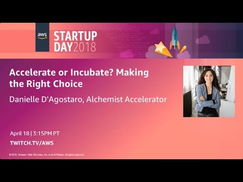 Accelerate or Incubate? Making the Right Choice