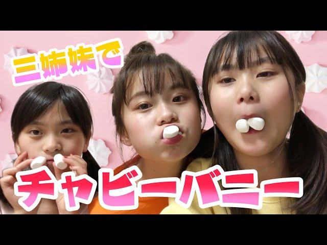 【三姉妹】チャビーバニーゲームやったら...