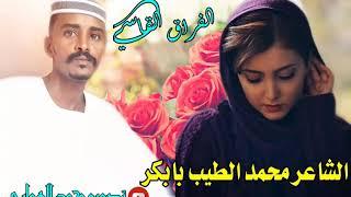 جديد الشاعر محمد الطيب بابكر /  غزل