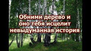Обними дерево и оно тебя исцелит - невыдуманная история