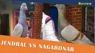 Video REVIEW Jendral dan Nagabonar FAI Team Brebes - 081220127568 download MP3, 3GP, MP4, WEBM, AVI, FLV Agustus 2018