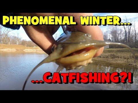 PHENOMENAL Winter CATFISHING?! One Fish EVERY 5 MINUTES!
