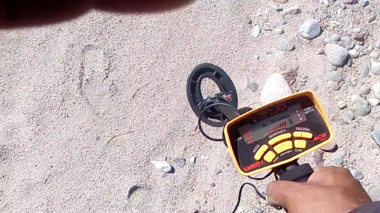 Buscadores De Tesoros Metal Detecting Buscando Con