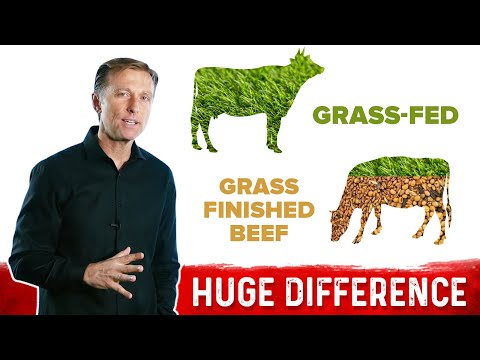 Grass-Fed vs Grass Finished Beef: Big Difference